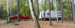 camping in the trees to oakland valley campground in ny